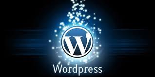 2017 Yılının En İyi WordPress Eklentileri