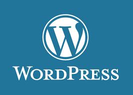 WordPress Yükledikten Sonra Yapılması Gerekenler